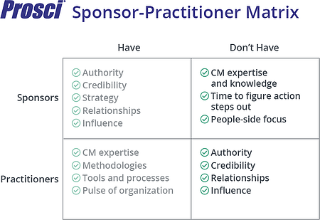 Sponsor-Practitioner Matrix-Dont-Haves