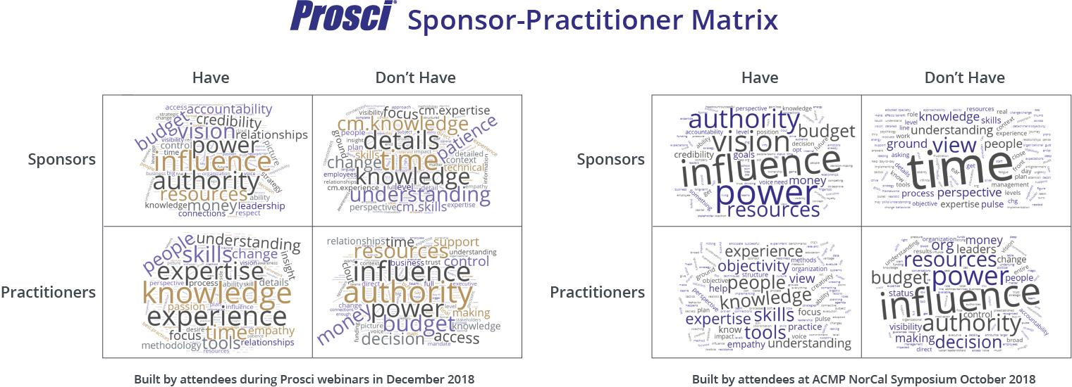 Sponsor-Practitioner Matrix-Examples