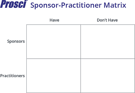 Sponsor-Practitioner Matrix