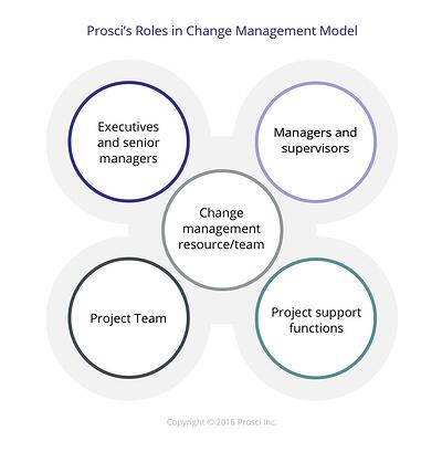 Roles_in_Change_Management.jpg