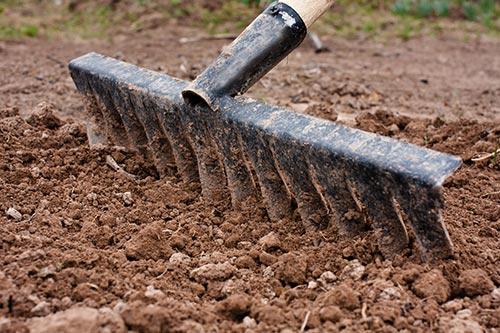 preparing-the-soil.jpg