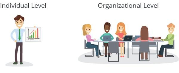Individual-Organizational-Level