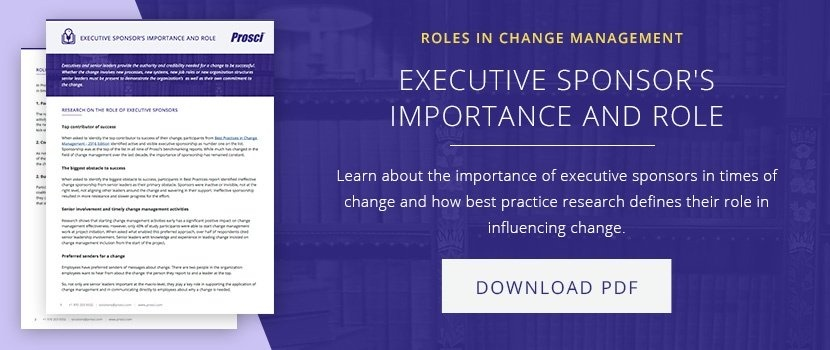 Executive Sponsr and Role download article